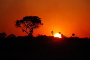 Sonnenuntergang im Okavangodelta