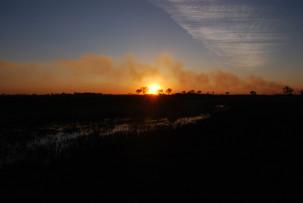 Sonnenuntergang im Okavangodelta mit Buschfeuer