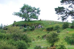 Baum auf Bilbo Baggins Höhle