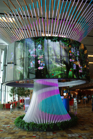 Changi Airport Singapur - Social Tree