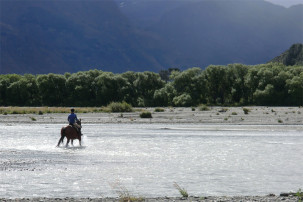 Horse Ride in Glenorchy
