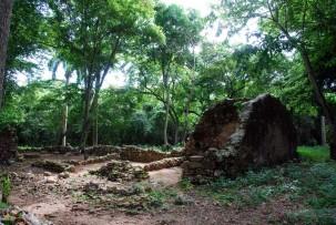 Ruinen der Sklavenbaracken im Valle des los Ingenios