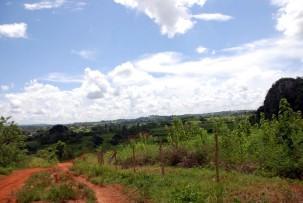 Valle des Vinales